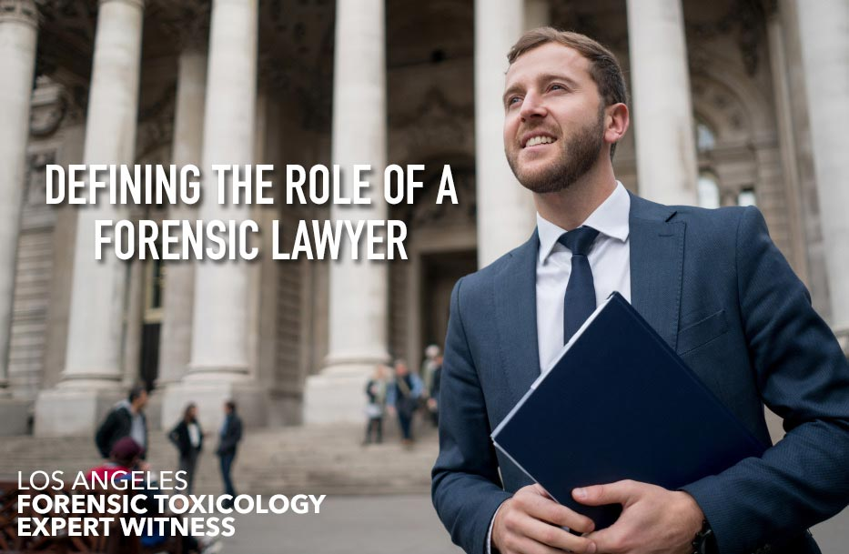 Forensic Lawyer