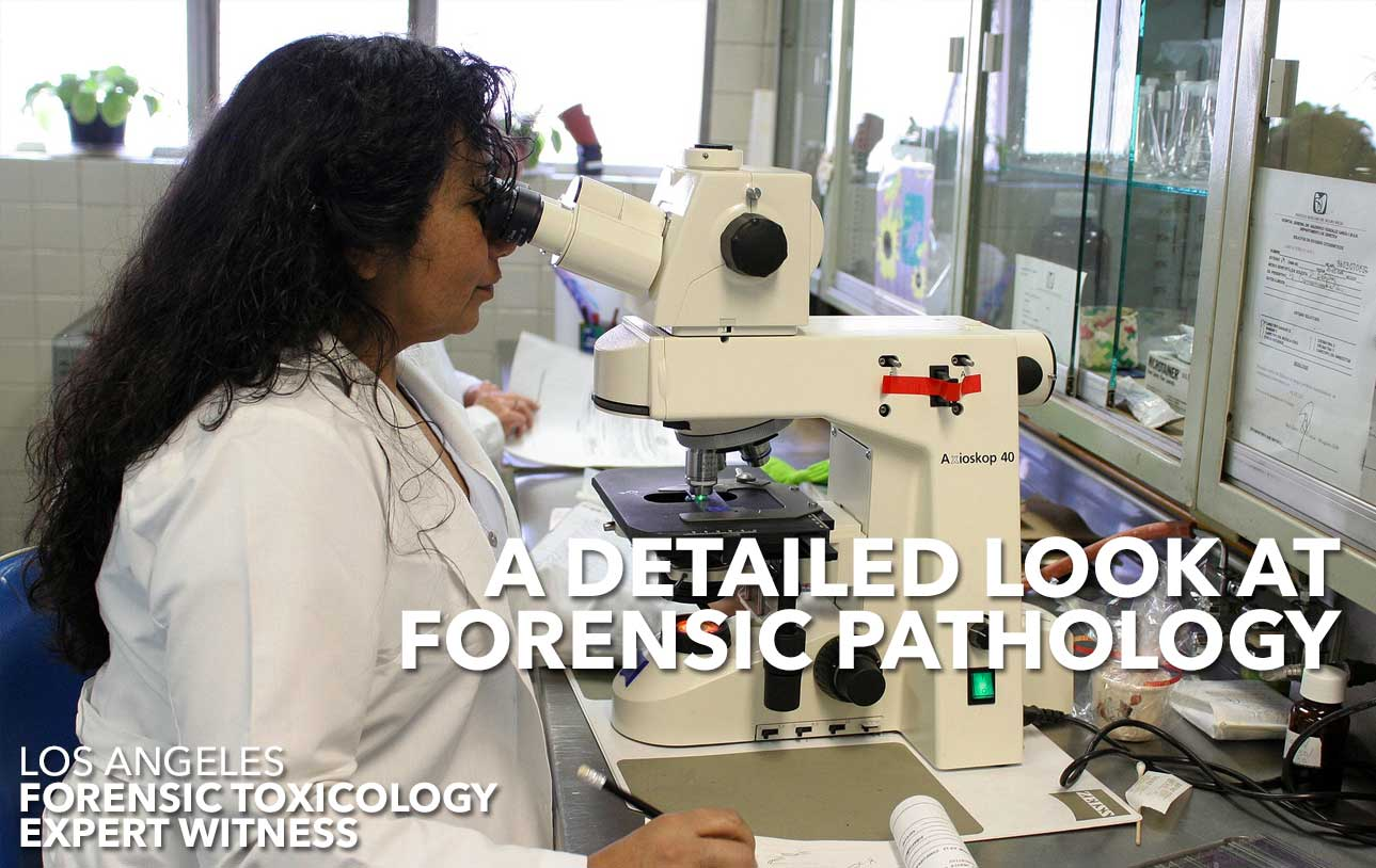 The Science Behind Forensic Pathology